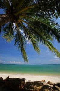 image-of-beach-in-thailand