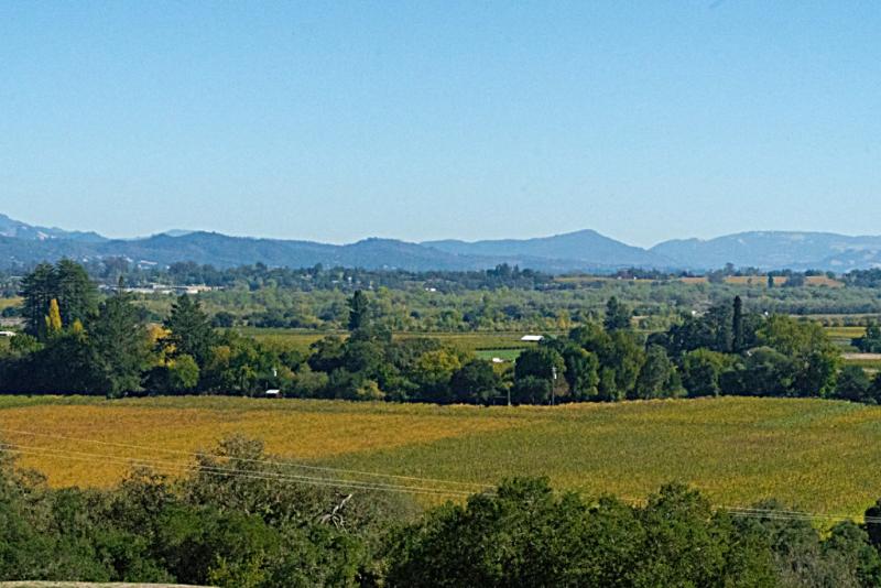 Sonoma-country-tasting_rooms_wineries_Armida_by_Mariah_Harkey_Sonoma_County_006-X2