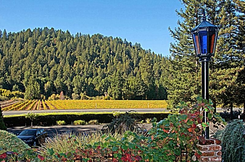 Sonoma_County-Korbel_winery-tasting-room