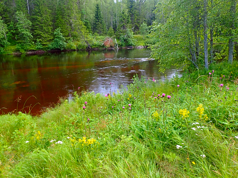 Sweden-umea-lodge-river