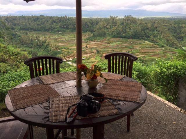 Bali-safari-11